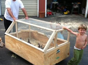 Homemade Chicken Brooder