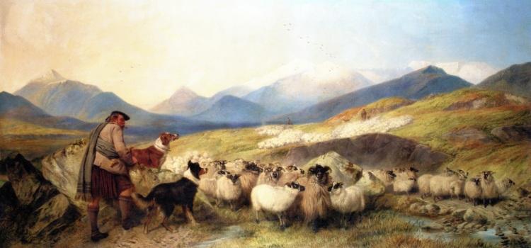 Sheep Gathering in Glen Spean - Richard Ansdell 1872