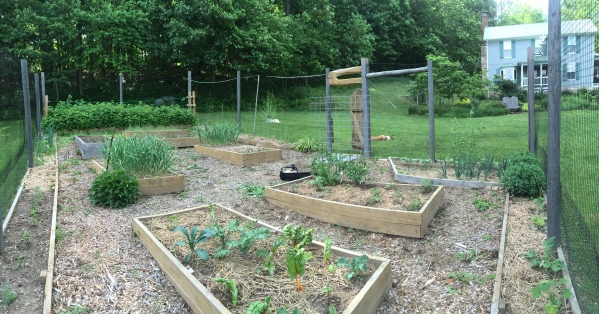 In the Garden 2015 May 30